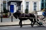 Dublin, Ireland Horse and Buggy