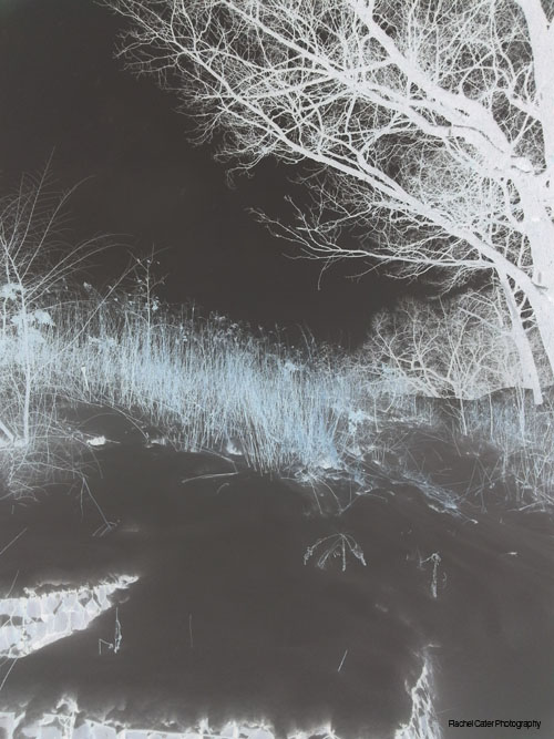 photo filter negative effect snowy Toronto