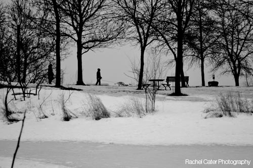 BW Photo of Couple walking their dog at Toronto Beach