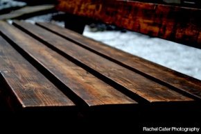 Colour Photography Close up of Park Bench in Toronto