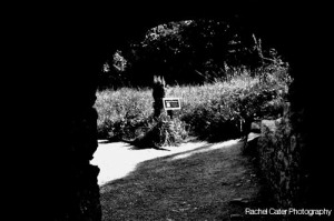 Ireland Blarney Castle Poison Garden
