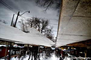 Puddle Reflections Neighb