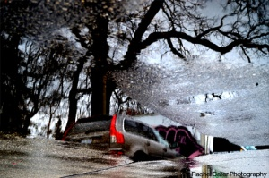 Puddle Reflections Parked Car and Tree in Toronto