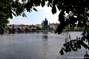 View of Charles Bridge Rachel Cater Photography
