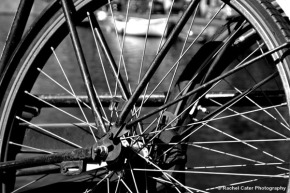 View through a bike bike in of focus Rachel Cater Photography