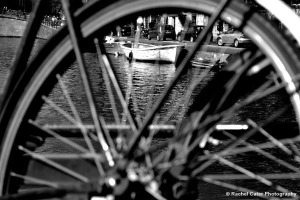 View through a bike bike out of focus Rachel Cater Photography