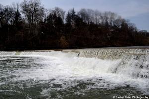 Dam in creek in Toronto Rachel Cater Photography