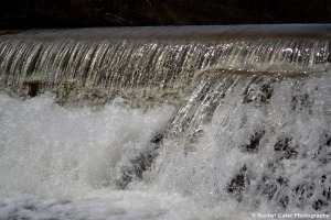 Dam in Toronto Rachel Cater Photography