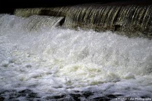 Dam running in Toronto Rachel Cater Photography