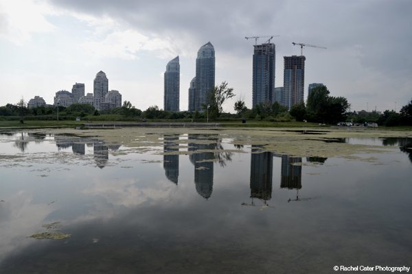 Reflection of Skyline in a Pond in Toronto Rachel Cater Photography