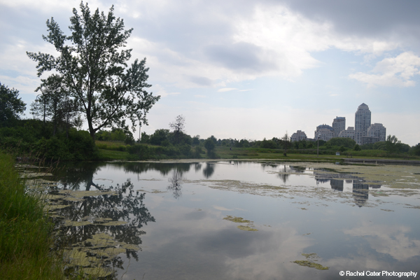 Reflection of Skyline in Pond Rachel Cater Photography