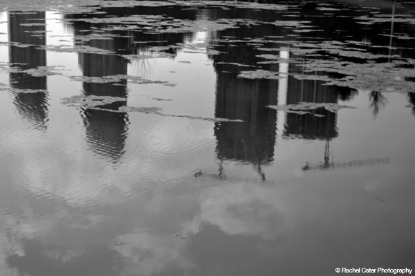 Reflections of buildings in a pond Rachel Cater Photography