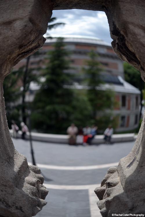 View through brick wall Rachel Cater Photography