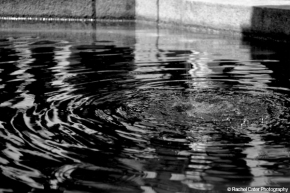 Water Ripple Rachel Cater Photography