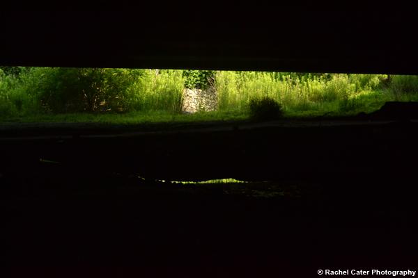 View under a bridge Rachel Cater Photography