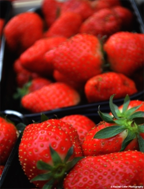 Strawberries Rachel Cater Photography