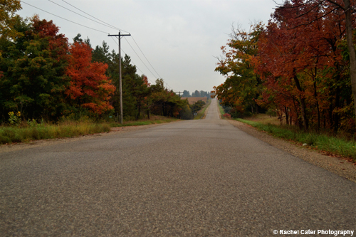 Autumn Road Rachel Cater Photography