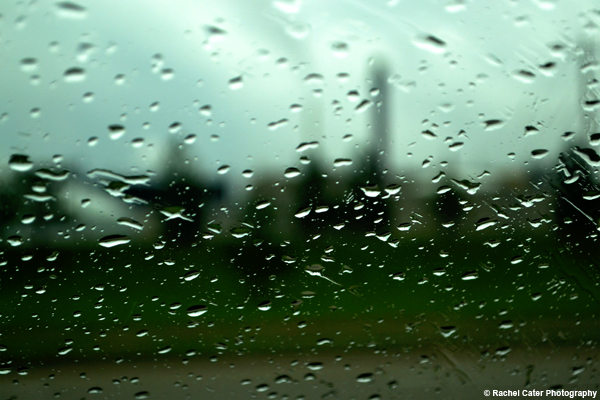 raindrops Rachel Cater Photography