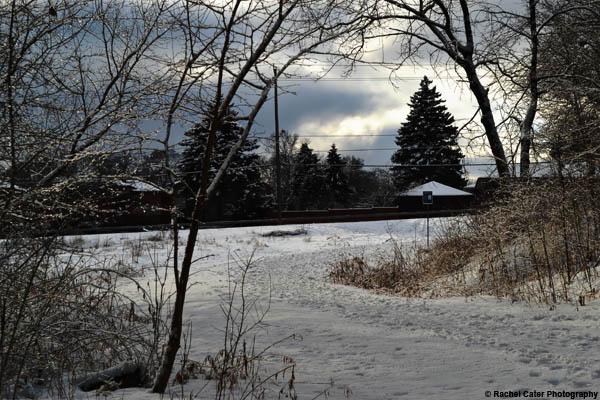 winter path Rachel Cater Photography