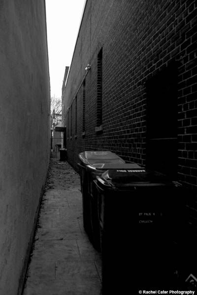 alley rachel cater photography copy