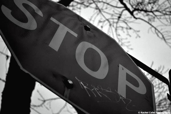 stop rachel cater photography