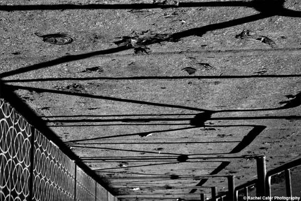 Lines and shadows Rachel Cater Photography