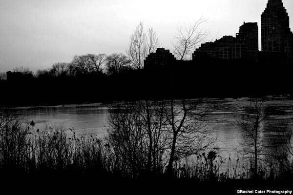pond's edge rachel cater photography