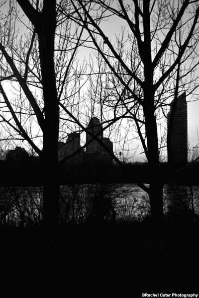 silhouettes urban rachel cater photography