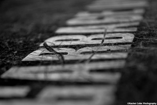 words rachel cater photography