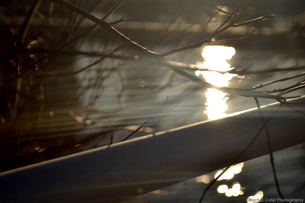 twilight golden light rachel cater photography copy