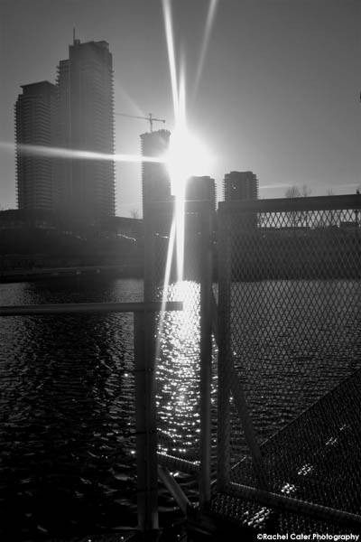 serenity rachel cater photography