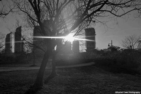 monochrome park rachel cater