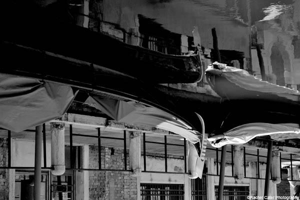 venetian reflections rachel cater photography