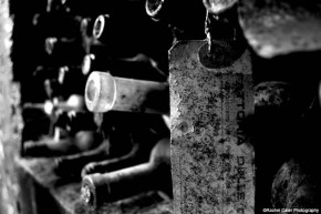 wine bottles italy rachel cater photography