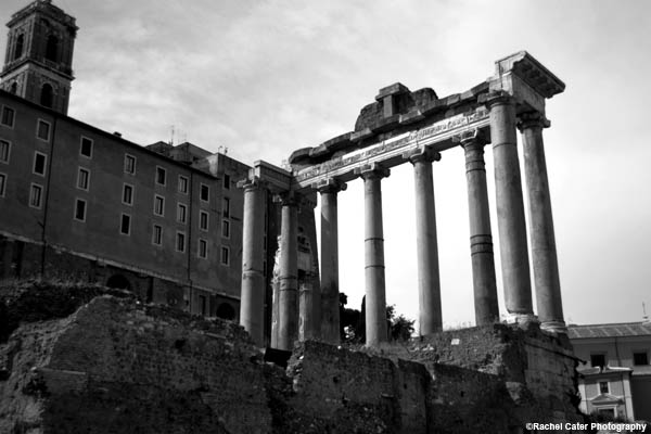 Palatine Hill Rachel Cater Photography
