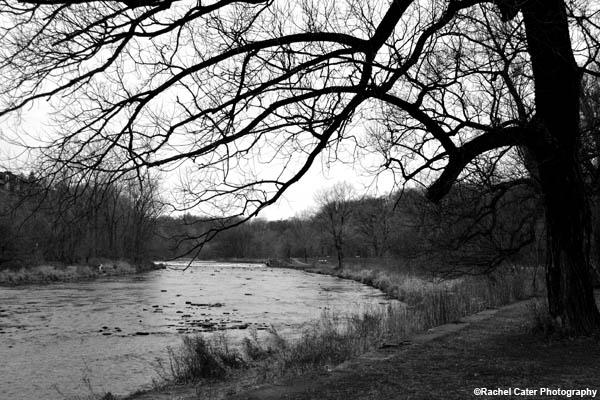 monochrome park rachel cater photography copy