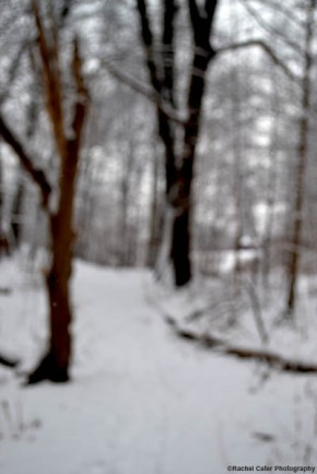 Blurry snowy scene in park Rachel Cater Photography