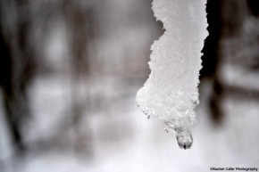 dangling-ice-rachel-cater-photography