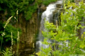 blurry-waterfall-rachel-cater-photography