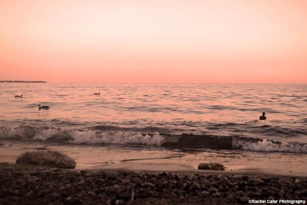 sunset-at-lake-ontario-rachel-cater-photography