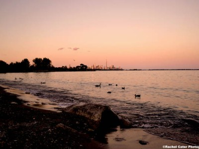 toronto-skyline-at-dusk-rachel-cater-photography